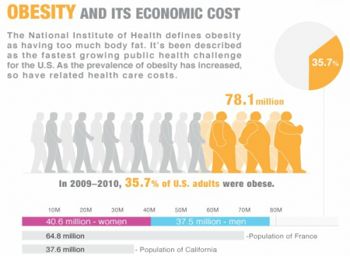 is technology to blame for americas obesity Americans are to blame for obesity the amount of obesity has gone up because we have gotten lazy the american people have the option although bad eating habits may be partially to blame for obesity, that is not the sole cause i myself eat takeout twice a week and i am certainly not overweight.