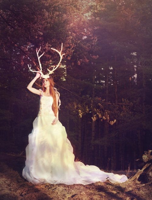 couture gown photography wedding