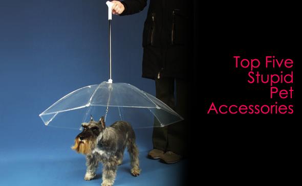 top five stupid pet accessories
