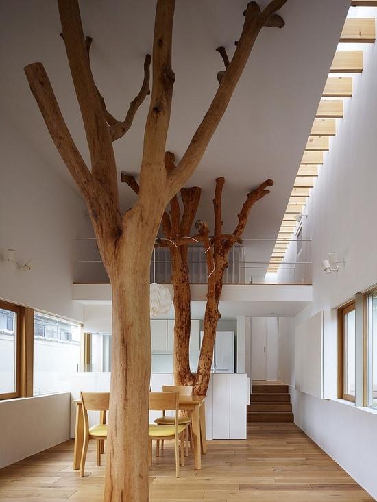 indoor forest