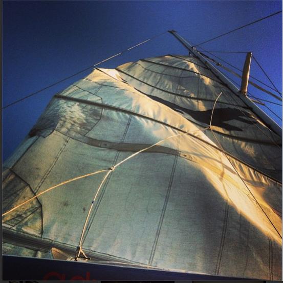 San Francisco instagram Adventurecat
