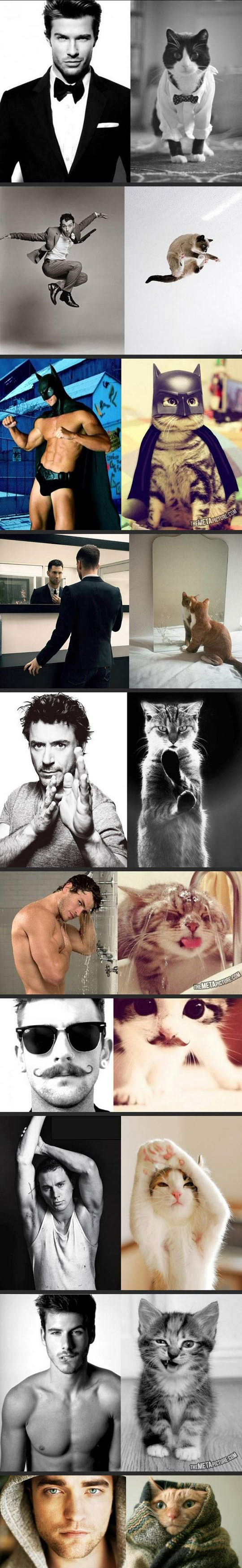 male models and cats