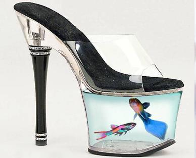 Lady Gaga Fish Tank Shoes