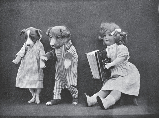 vintage puppy