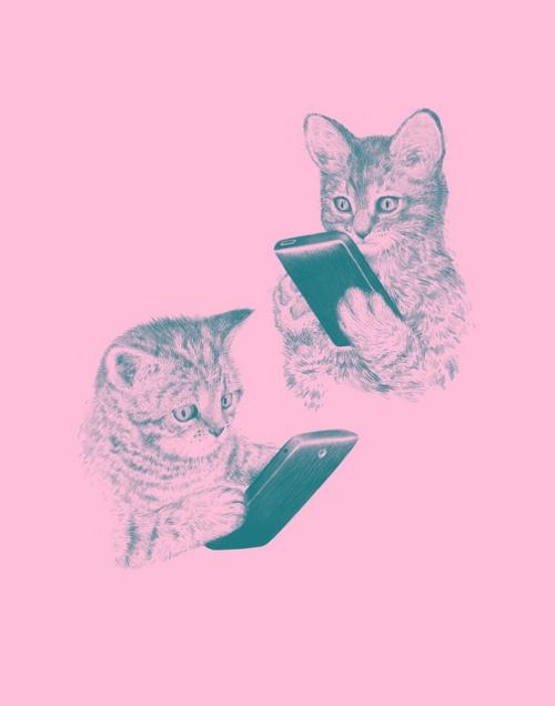 Text kittens