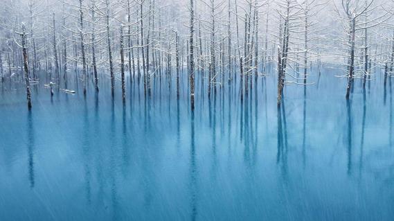 the blue pond, Hokkaido