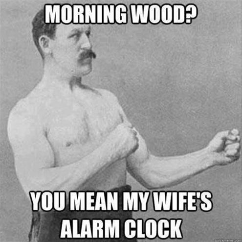 morning erections explained