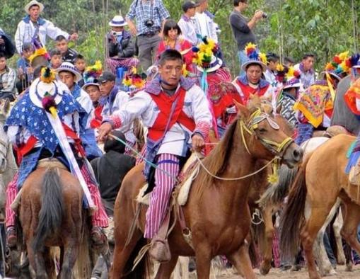 drunken horse racing