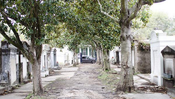 cemeterynola